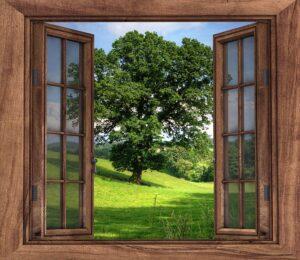 inles okna